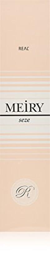 偽造別の害メイリー セゼ(MEiRY seze) ヘアカラー 1剤 90g 5NB