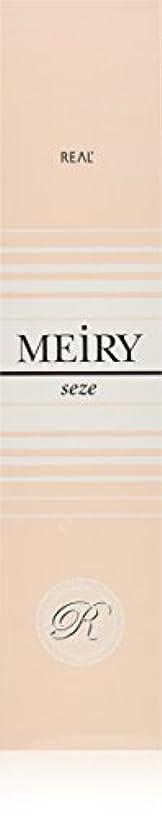 錆び議題描写メイリー セゼ(MEiRY seze) ヘアカラー 1剤 90g 5NB