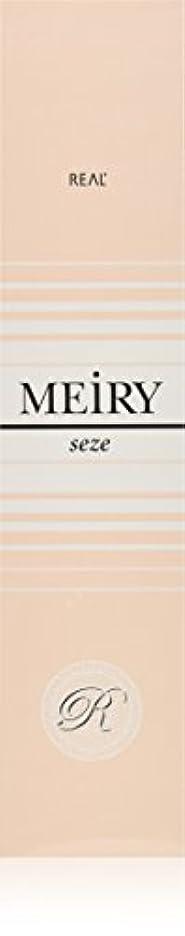 夏未亡人階段メイリー セゼ(MEiRY seze) ヘアカラー 1剤 90g 5NB