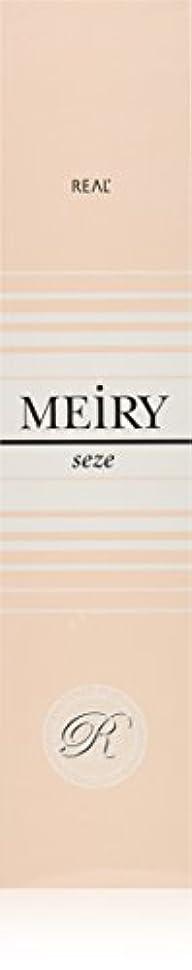 クマノミ教育者警告メイリー セゼ(MEiRY seze) ヘアカラー 1剤 90g 5NB