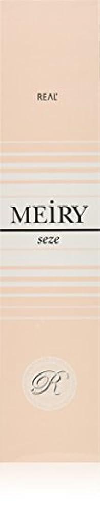 締め切り無効にする岸メイリー セゼ(MEiRY seze) ヘアカラー 1剤 90g 5NB