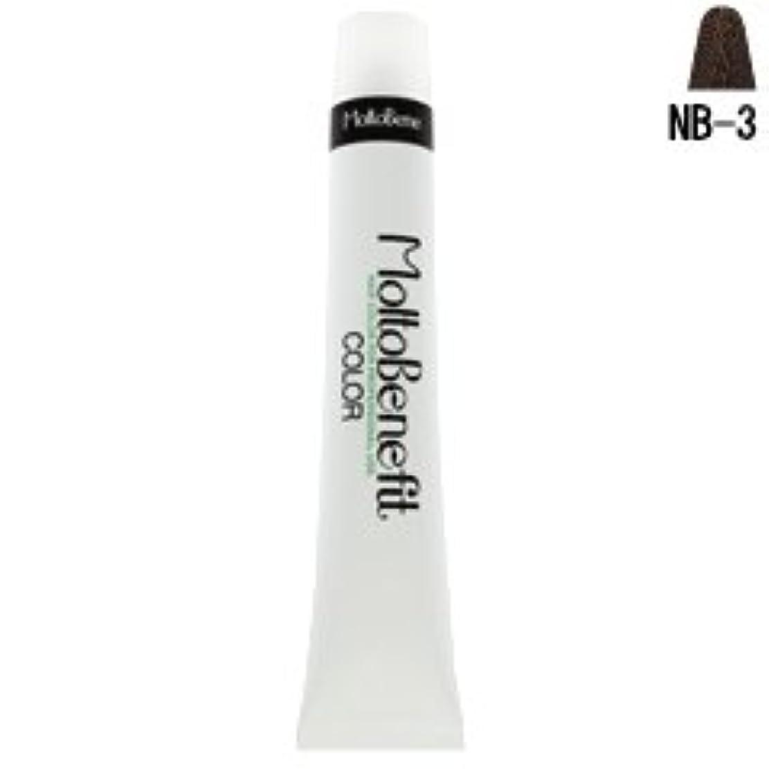リスナー命令植物の【モルトベーネ】フィットカラー グレイナチュラルカラー NB-3 ナチュラルブラウン 60g