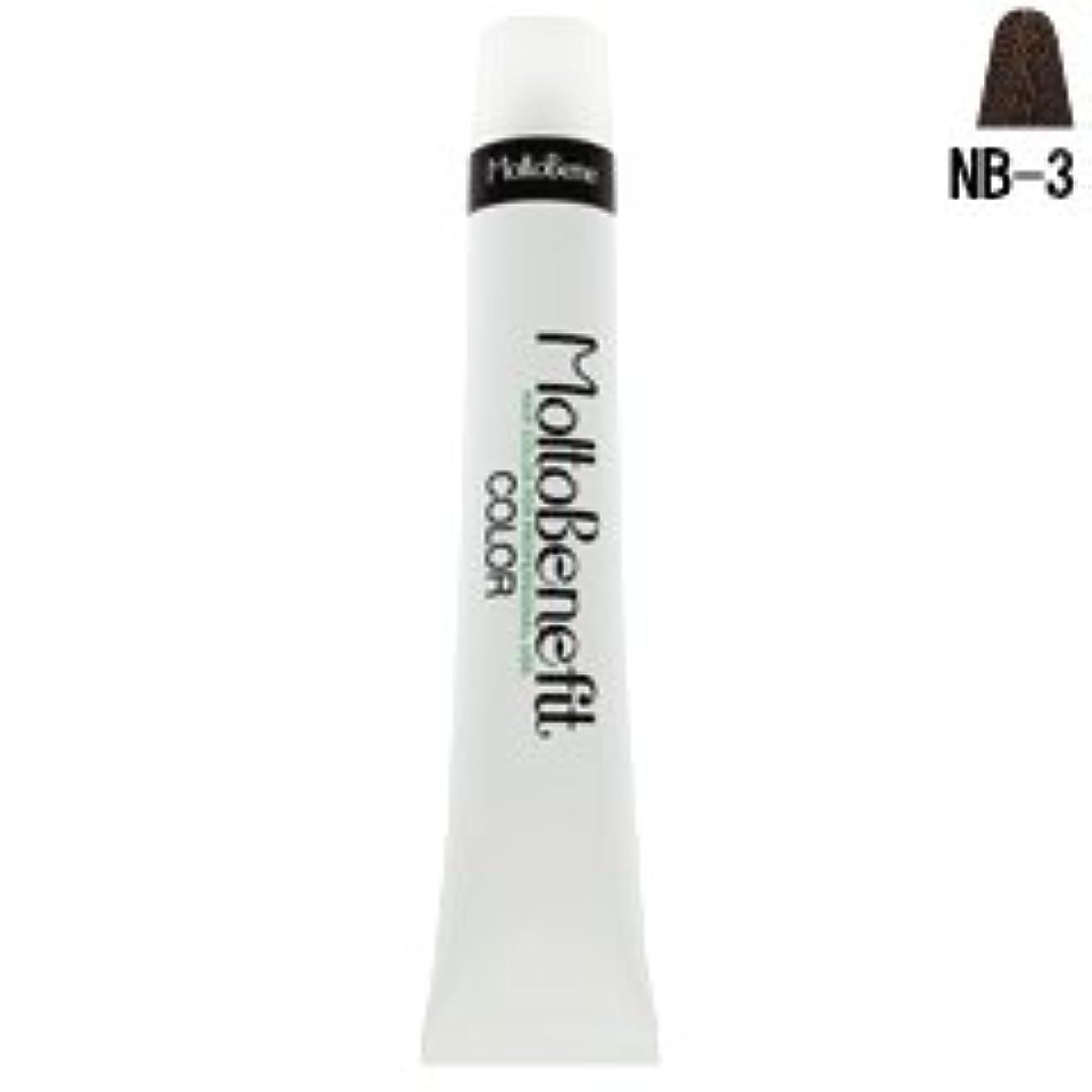 ふさわしい許可最大化する【モルトベーネ】フィットカラー グレイナチュラルカラー NB-3 ナチュラルブラウン 60g