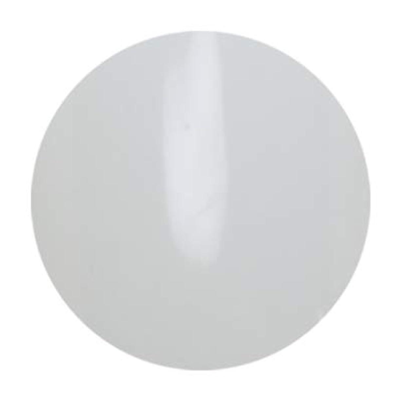ダーツ徹底的に綺麗なアンジェル ビルダーカラージェル ALB01 エベレスト 3g