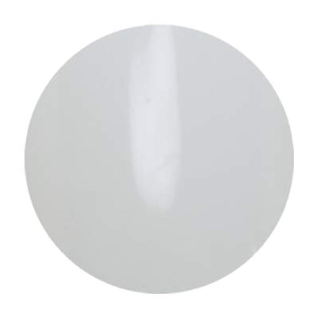 北東遡るどこかアンジェル ビルダーカラージェル ALB01 エベレスト 3g