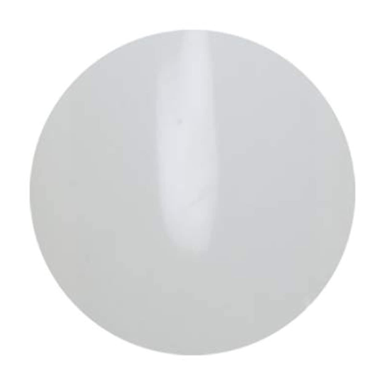 ライナープロテスタント私たち自身アンジェル ビルダーカラージェル ALB01 エベレスト 3g