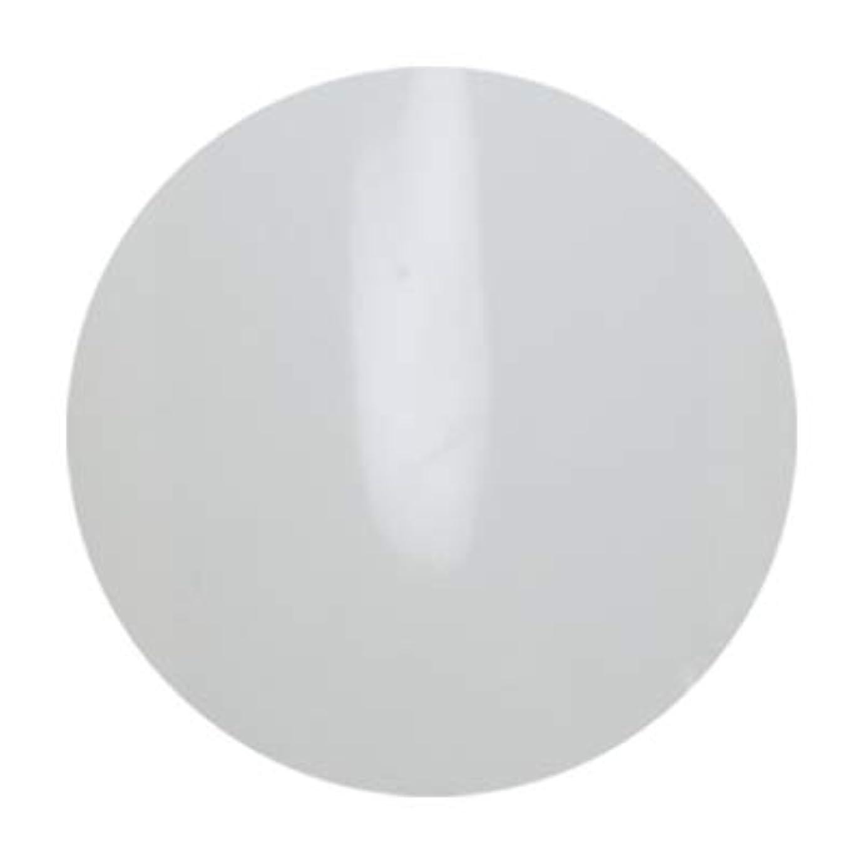 アンジェル ビルダーカラージェル ALB01 エベレスト 3g