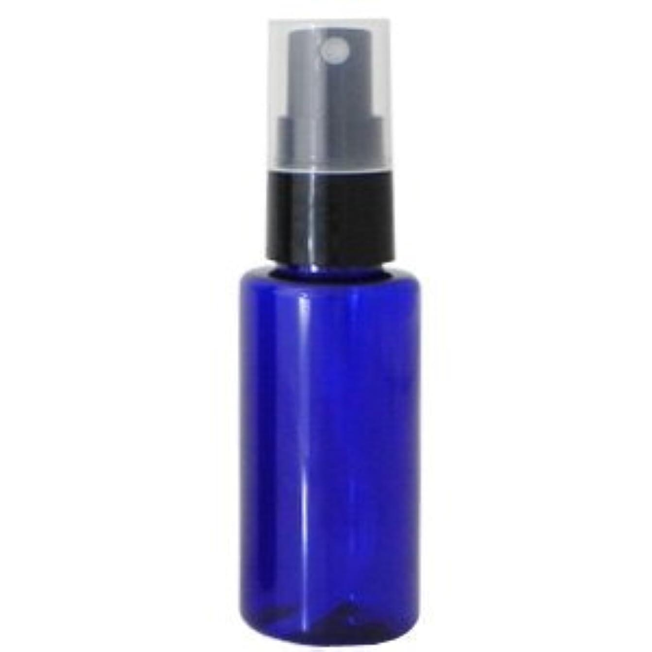 指標減る本PETボトル スプレー コバルトブルー (青) 50ml