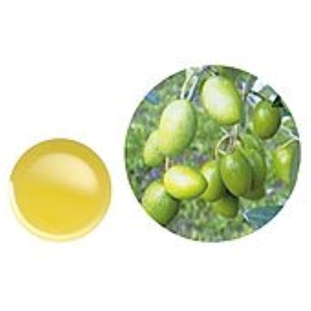 きつくセッション増加する有機オリーブオイル?エキストラバージン 70mL 生活の木