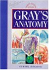 Gray's Anatomy: The Anatomical Basis of Medicine and Surgery (Gray's Anatomy: the Anatomical Basis of Clinical Practice)