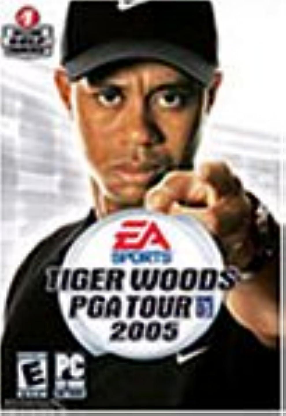 目に見える器具彫るTIGER WOODS PGA TOUR 2005(輸入版)