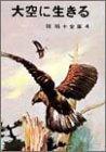 椋鳩十全集〈4〉大空に生きるの詳細を見る