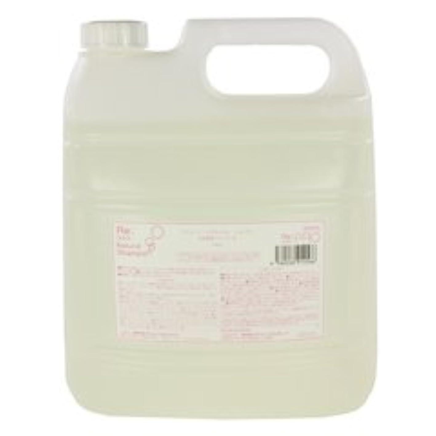 分析アレルギー性湿気の多いリ:ナチュラル シャンプー (詰替用) 4000ml 【アジュバン】