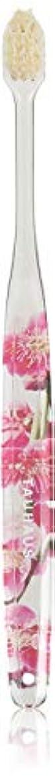 従うくるみイソギンチャクOluma 白馬毛歯ブラシ(梅の花)