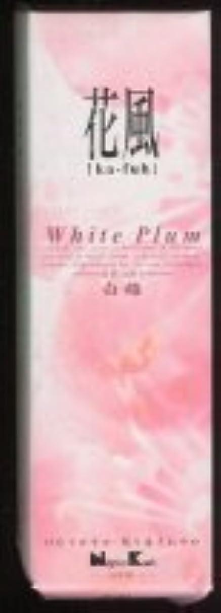 パノラマ想像する転送花風 白梅 小バラ詰