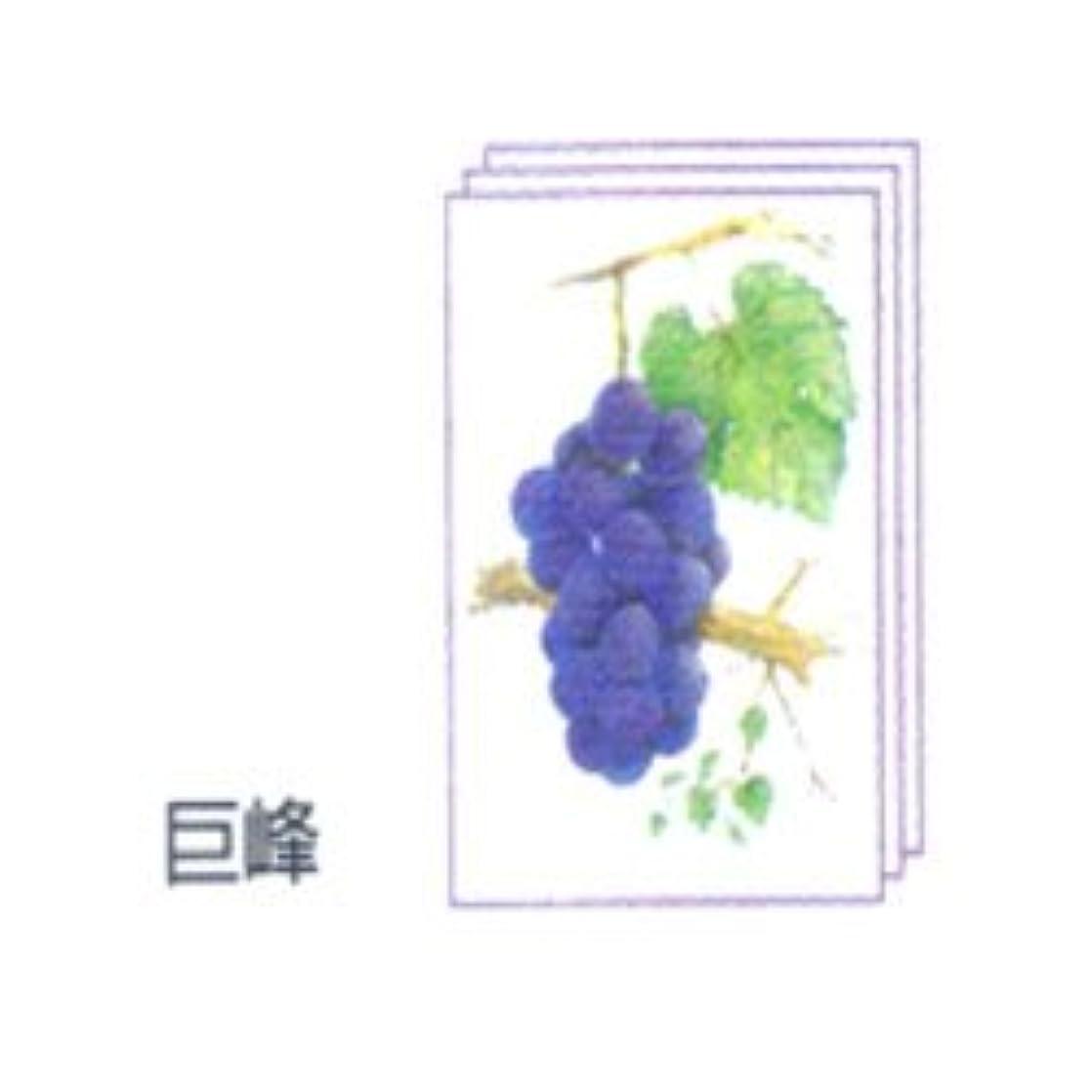 民主党翻訳するアリ塗り絵物語 枝付の果物編 ※巨峰