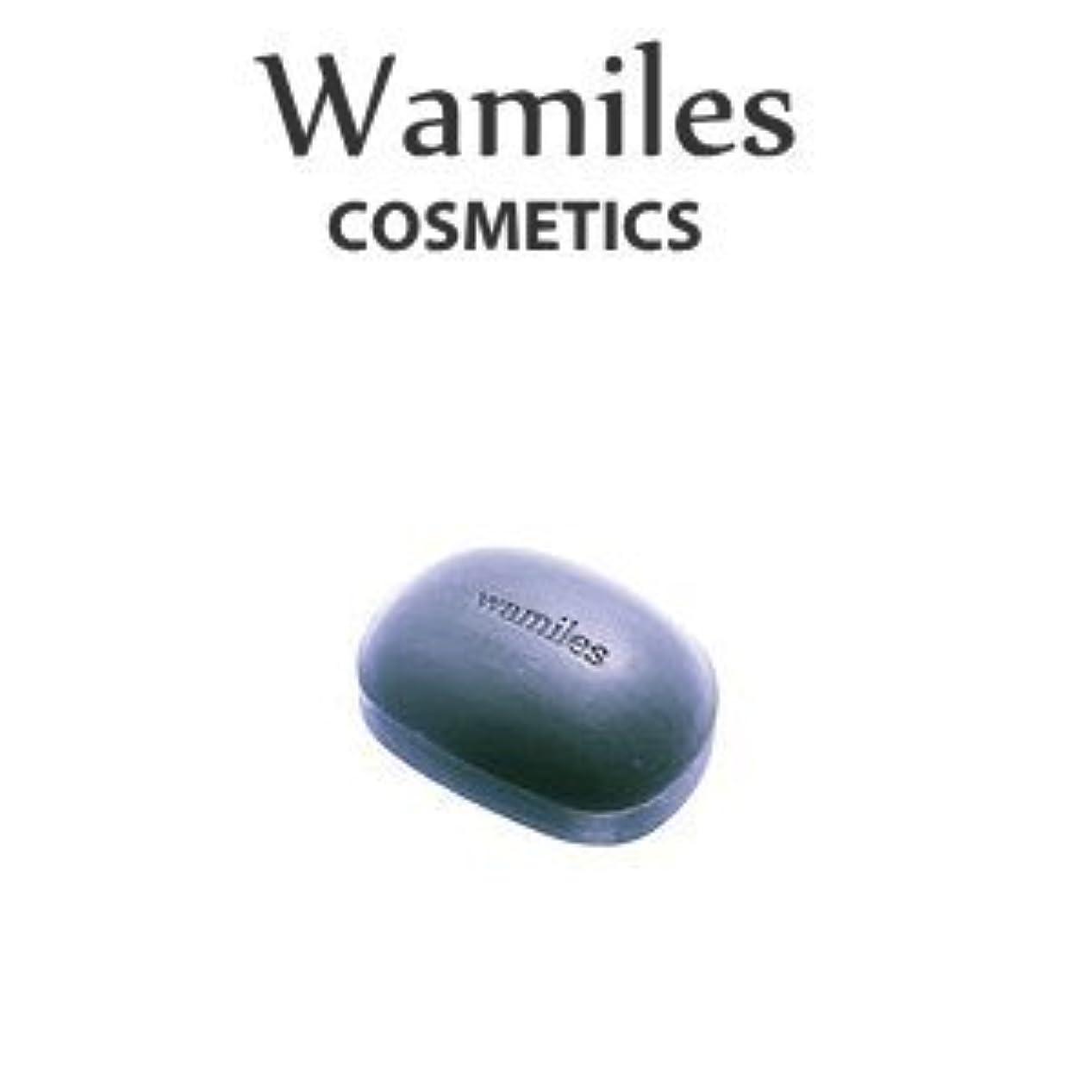 トーン入り口反対するwamiles/ワミレス ベーシックライン イオンヌ クレイソープ 100g