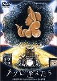 天野月子 年末スペシャル2002「メグに逢えたら」 [DVD]