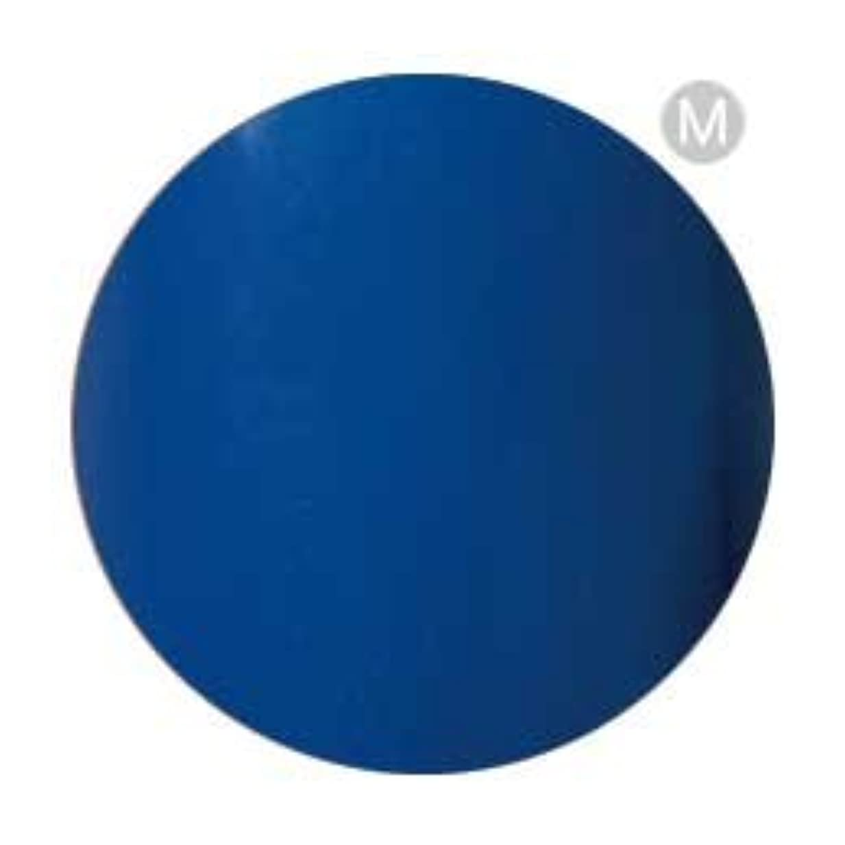 セグメント他のバンドで恥ずかしいPalms Graceful カラージェル 3g 004 ブルー