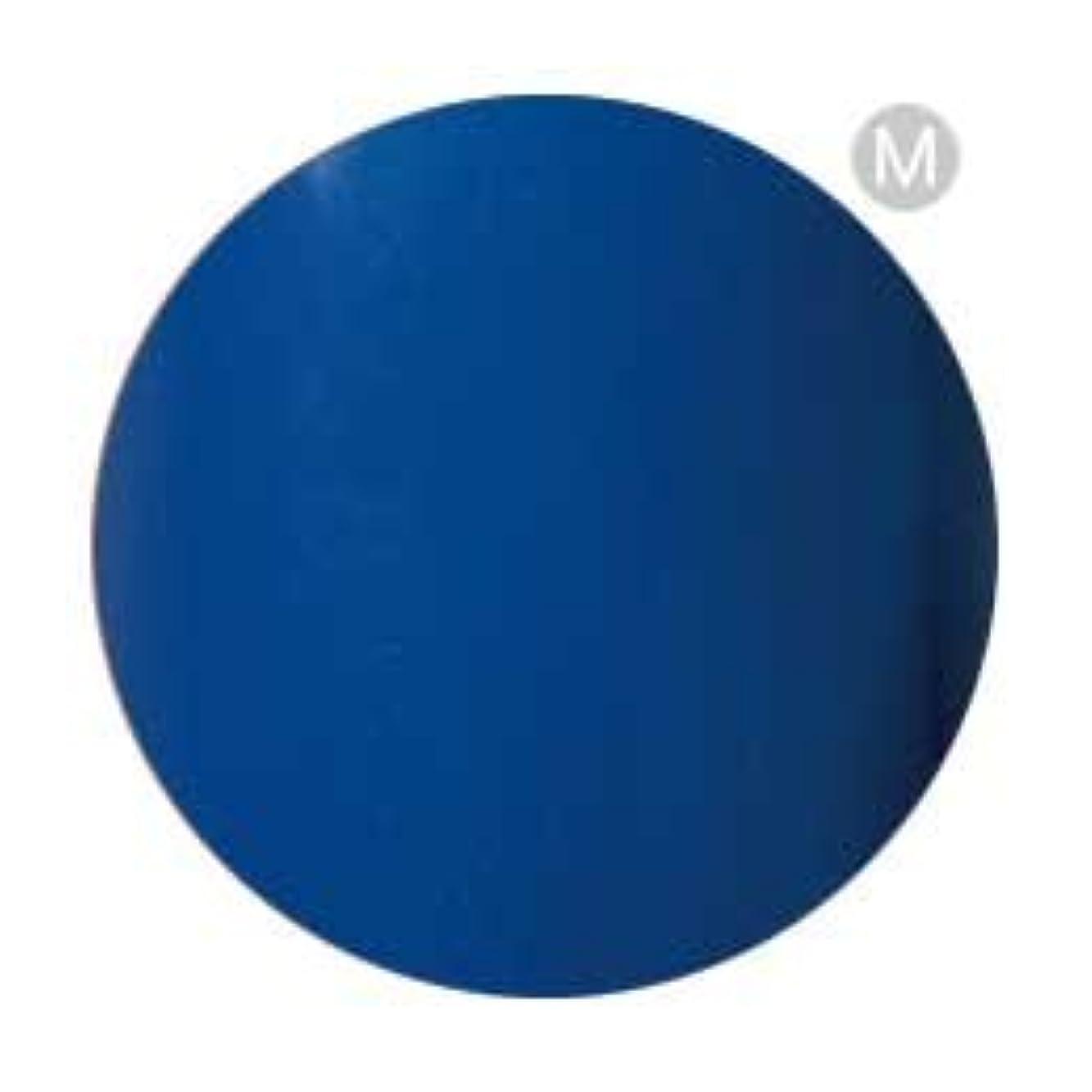 グループ振り子水曜日Palms Graceful カラージェル 3g 004 ブルー