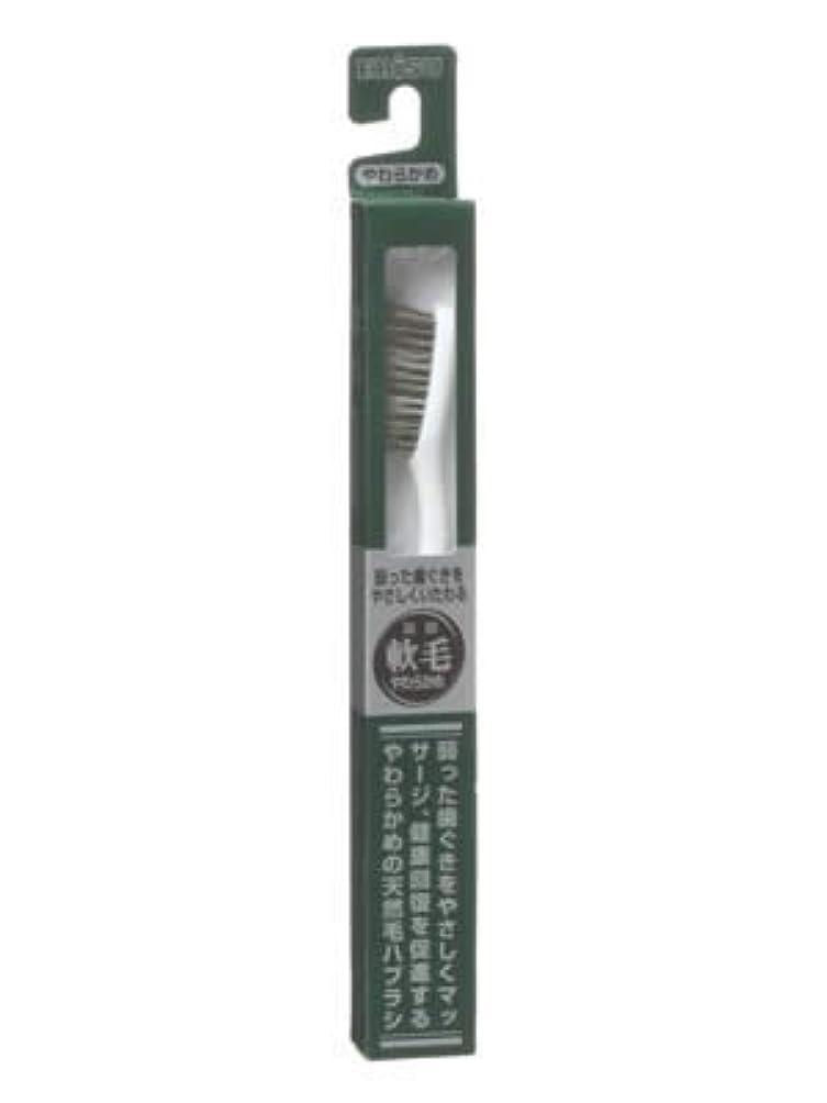 目覚める強調嫌悪エビス 天然毛軟毛歯ブラシ350 やわらかめ ×10個セット