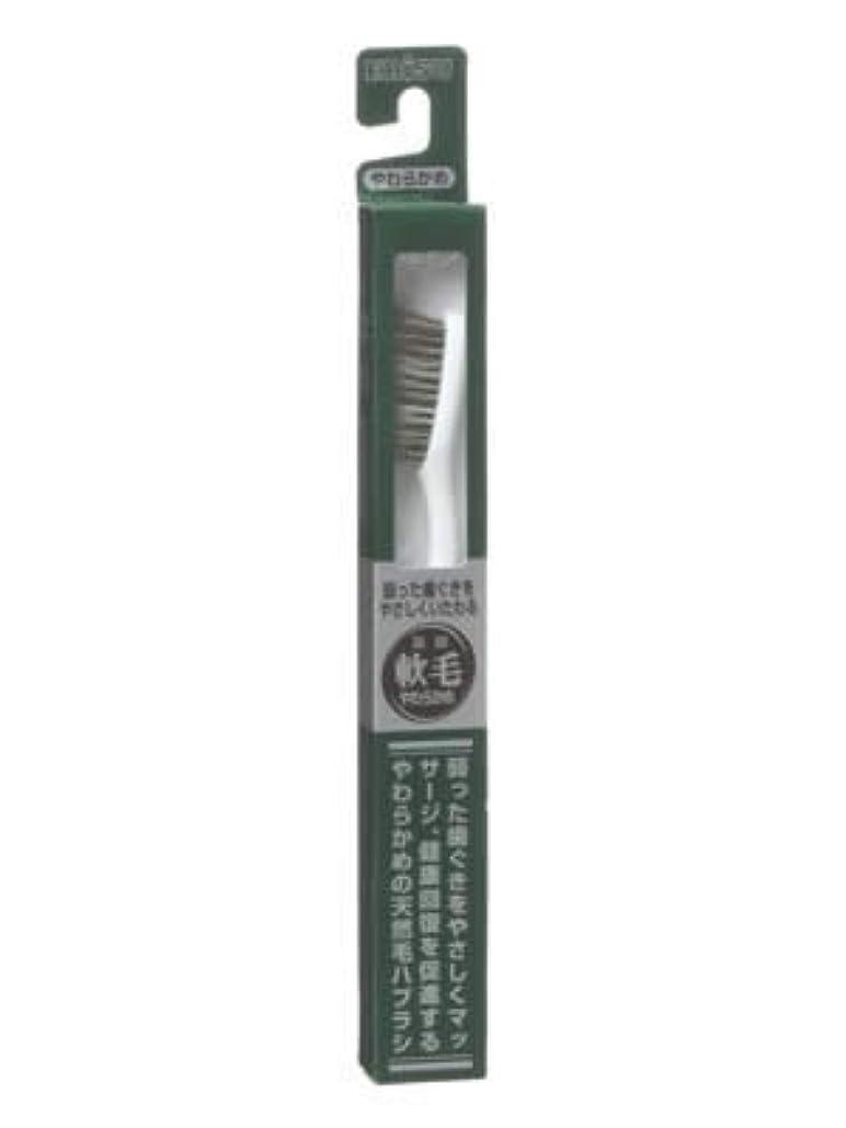 チェリーライオン展示会エビス 天然毛軟毛歯ブラシ350 やわらかめ ×5個セット