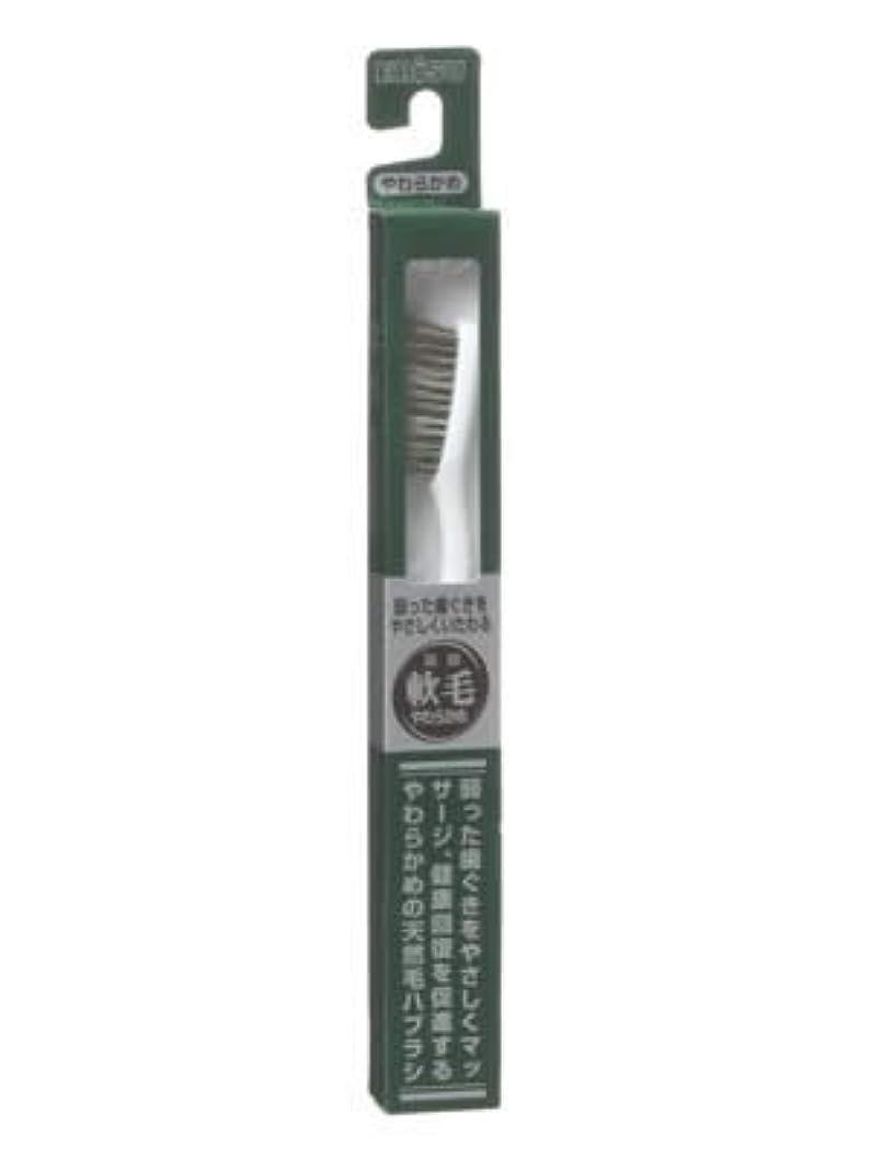 契約する費やす発症エビス 天然毛軟毛歯ブラシ350 やわらかめ ×10個セット