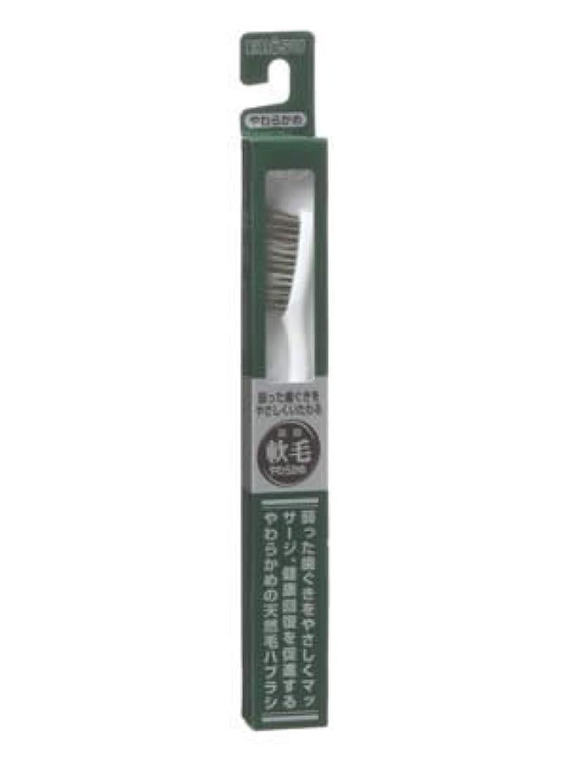 ワックスリー不条理エビス 天然毛軟毛歯ブラシ350 やわらかめ ×5個セット
