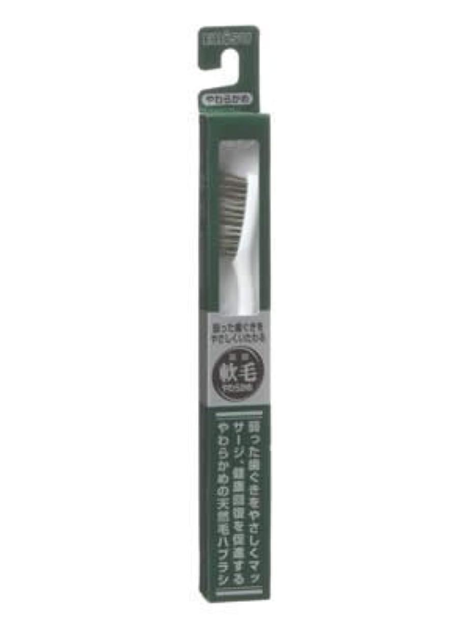 住居区画ブラウンエビス 天然毛軟毛歯ブラシ350 やわらかめ ×5個セット