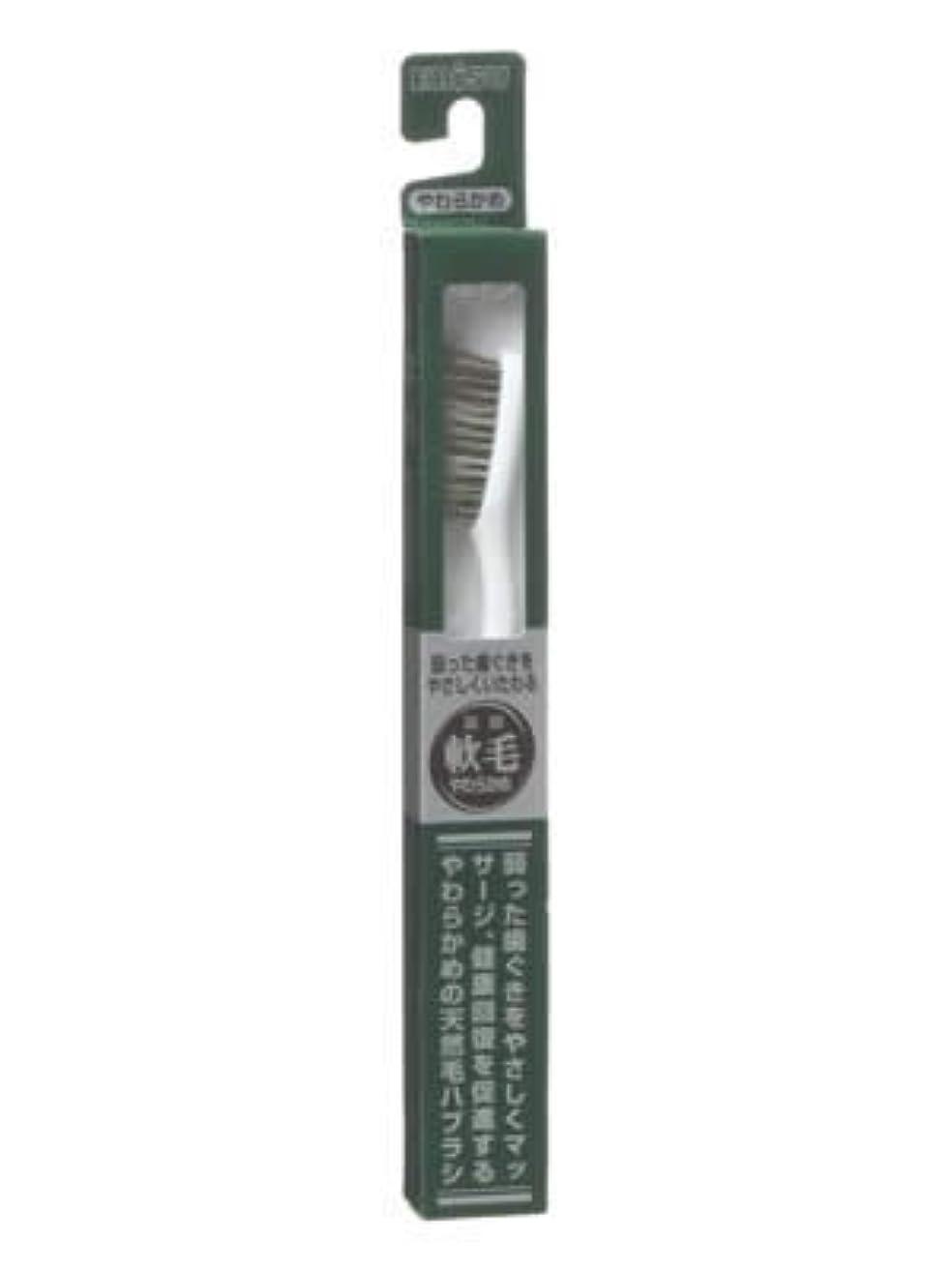 再集計慢パーセントエビス 天然毛軟毛歯ブラシ350 やわらかめ ×6個セット