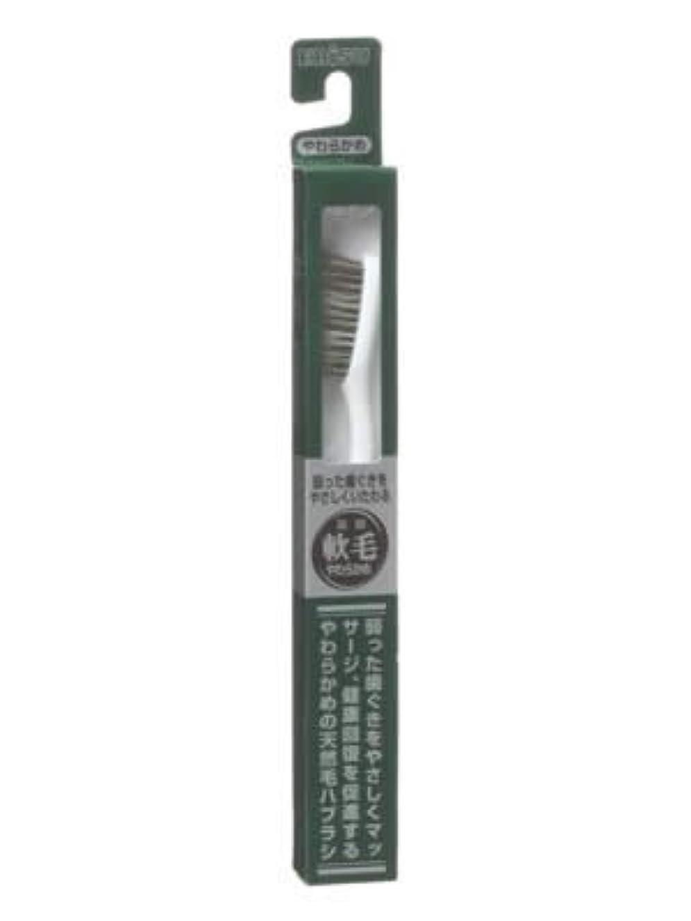 豊富な実行する爆発エビス 天然毛軟毛歯ブラシ350 やわらかめ ×3個セット
