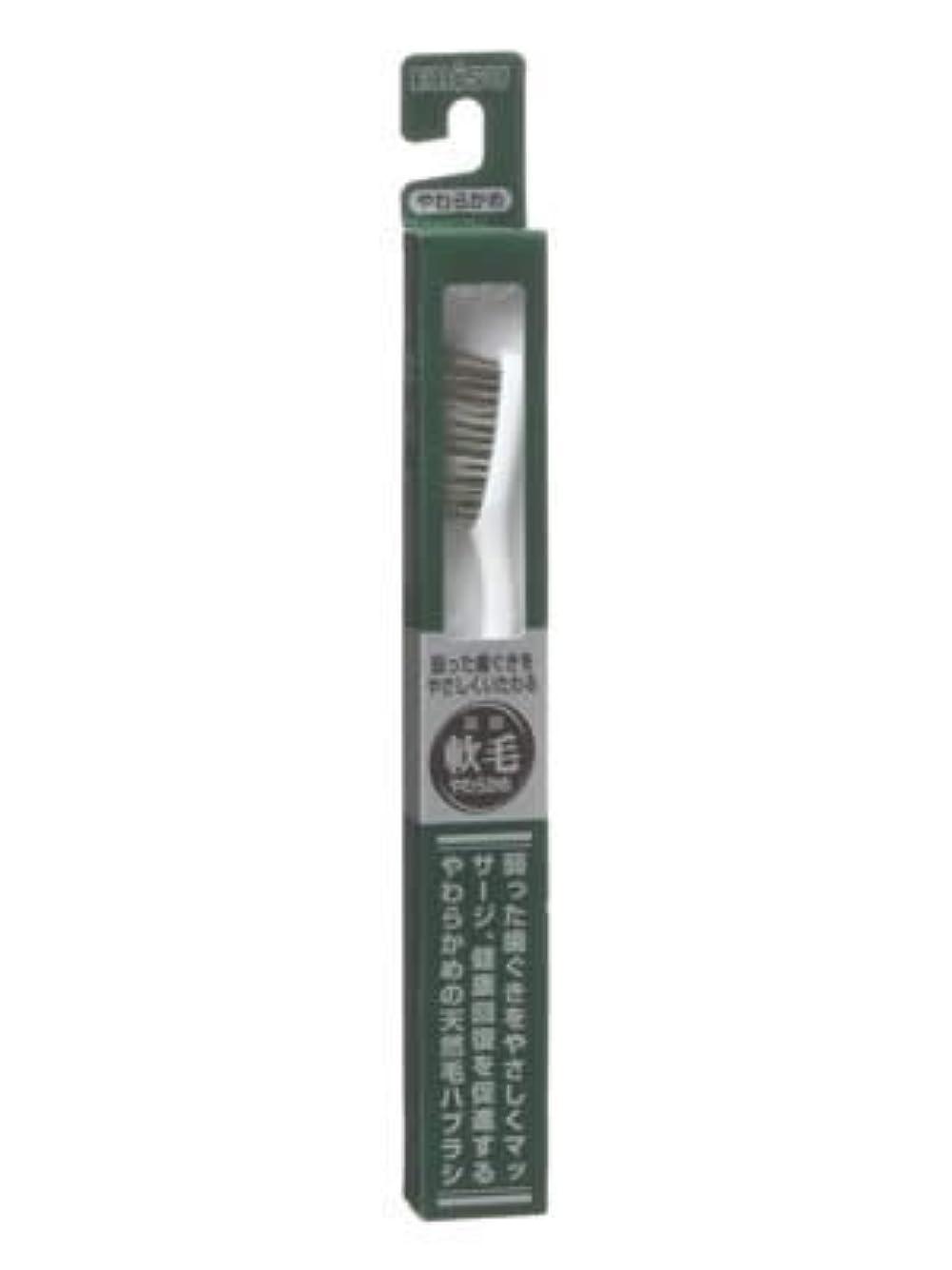 筋肉のいう若さエビス 天然毛軟毛歯ブラシ350 やわらかめ ×5個セット