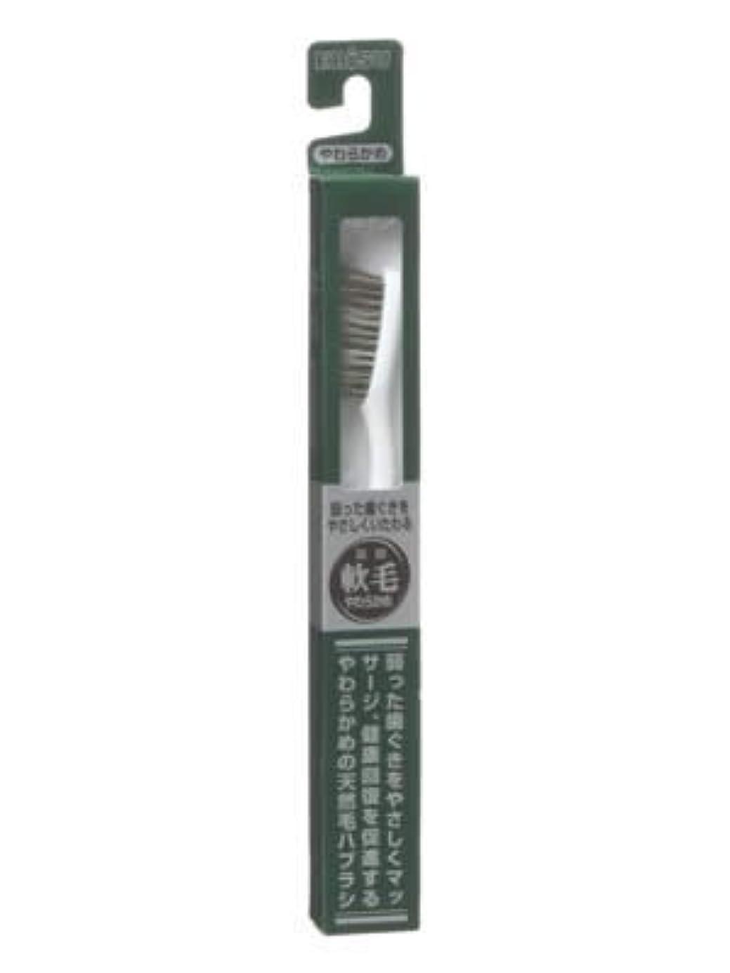出席する地震原子エビス 天然毛軟毛歯ブラシ350 やわらかめ ×10個セット