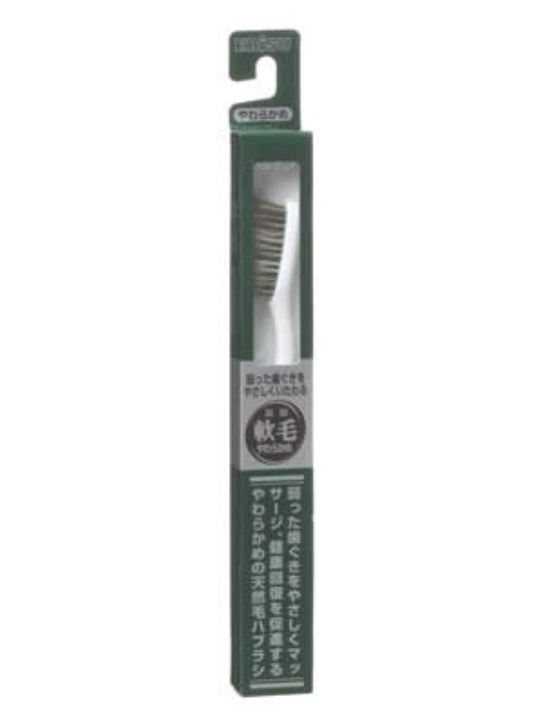 虹売り手似ているエビス 天然毛軟毛歯ブラシ350 やわらかめ ×10個セット