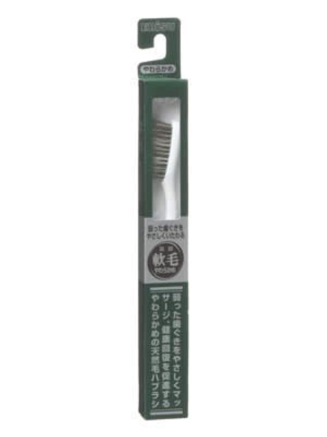 長くするあいまい寛容なエビス 天然毛軟毛歯ブラシ350 やわらかめ ×10個セット