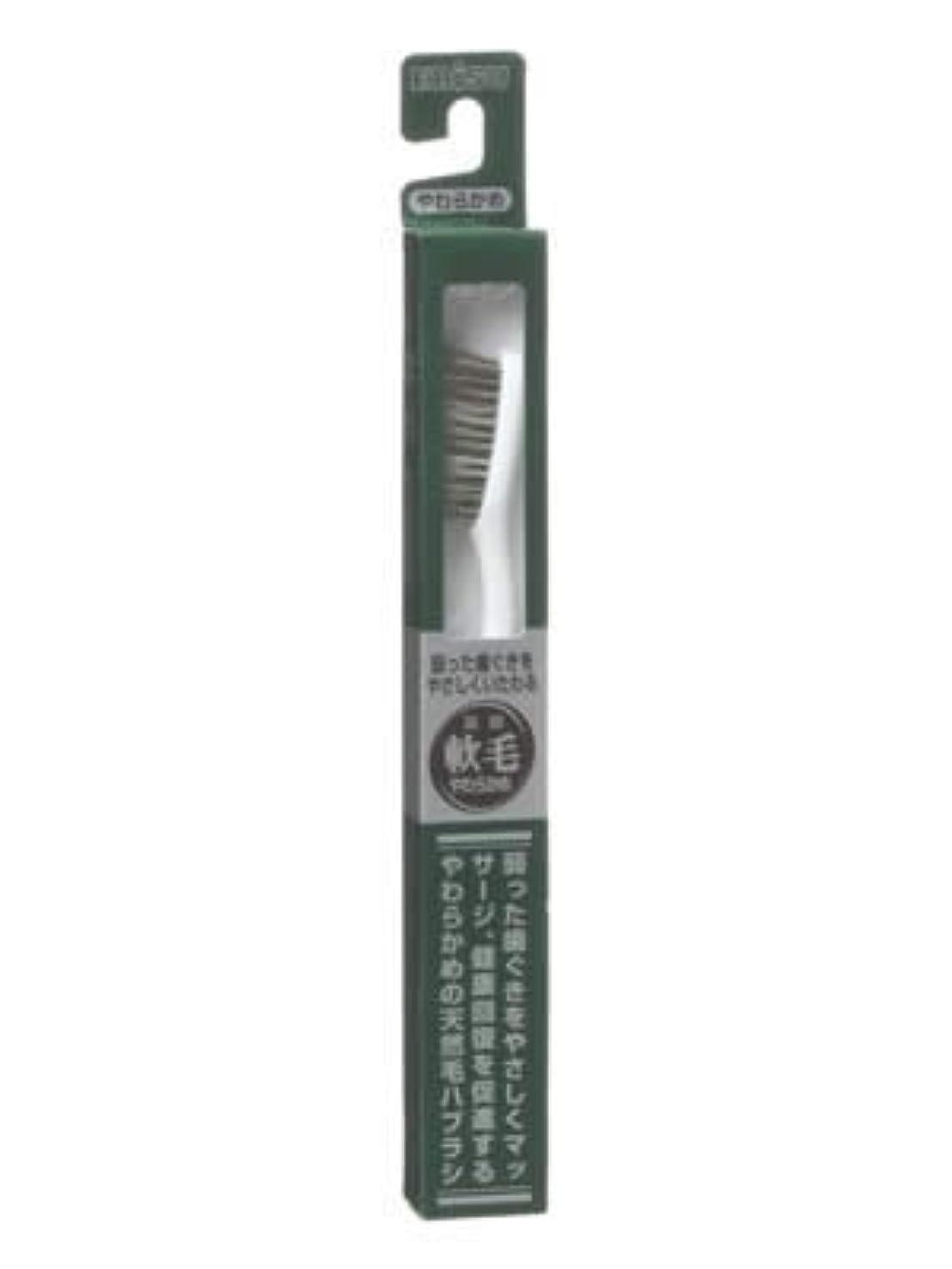 スピリチュアルエステート気を散らすエビス 天然毛軟毛歯ブラシ350 やわらかめ ×5個セット