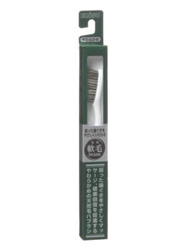 忌まわしいおもちゃ多用途エビス 天然毛軟毛歯ブラシ350 やわらかめ ×6個セット