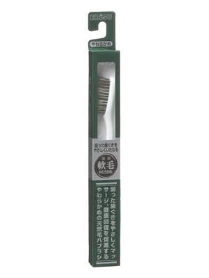 トロピカルあまりにも南方のエビス 天然毛軟毛歯ブラシ350 やわらかめ ×10個セット