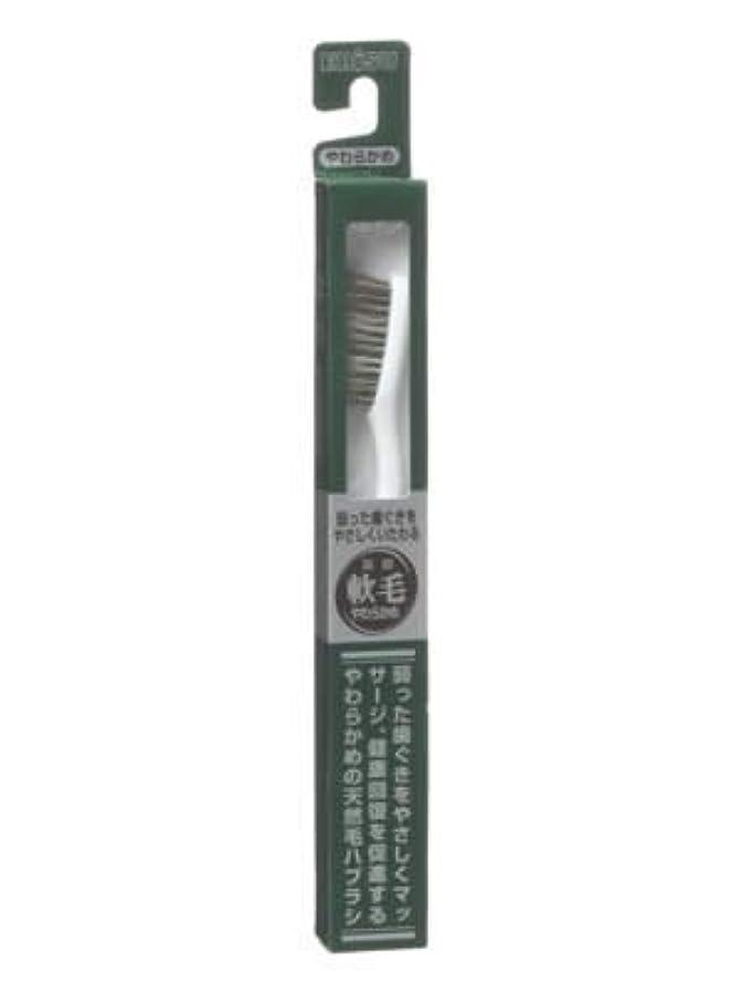 地中海熟達むしろエビス 天然毛軟毛歯ブラシ350 やわらかめ ×10個セット
