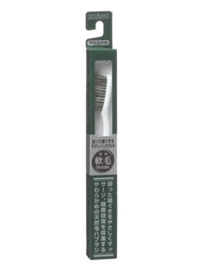 ポスターまたね侵入エビス 天然毛軟毛歯ブラシ350 やわらかめ ×5個セット
