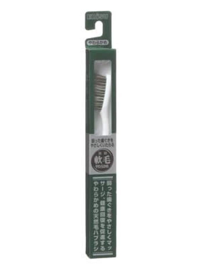 正確さうめき声バックエビス 天然毛軟毛歯ブラシ350 やわらかめ ×10個セット