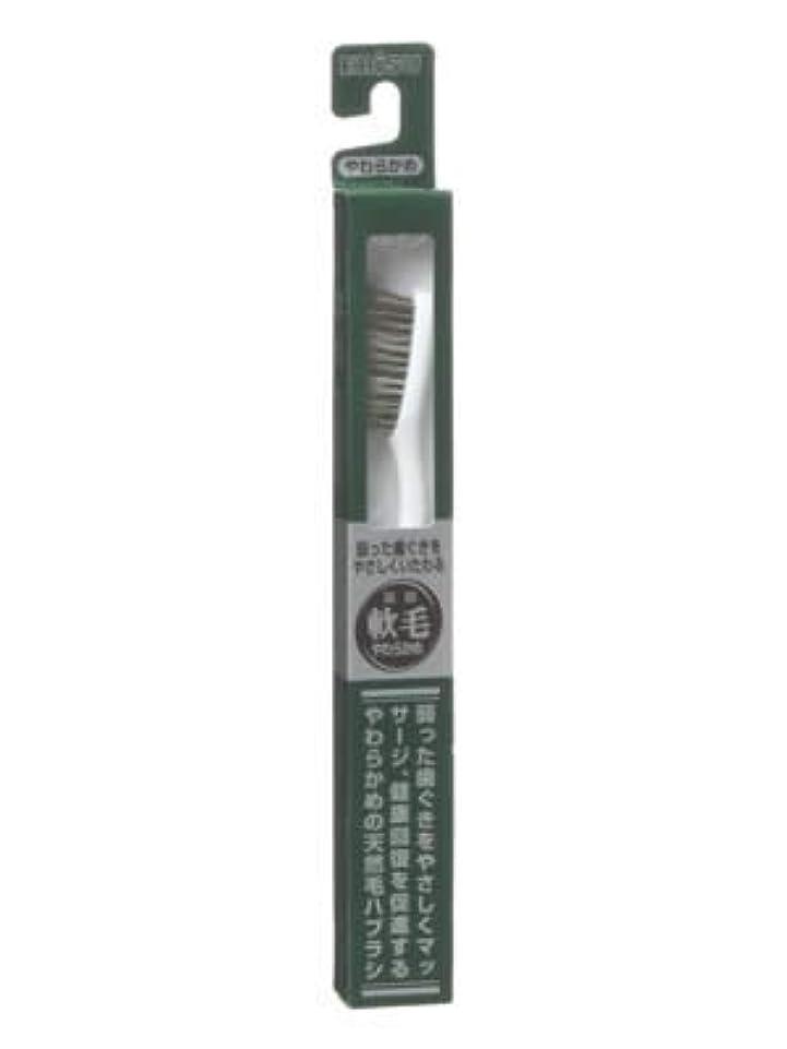 請負業者請負業者安定しましたエビス 天然毛軟毛歯ブラシ350 やわらかめ ×10個セット