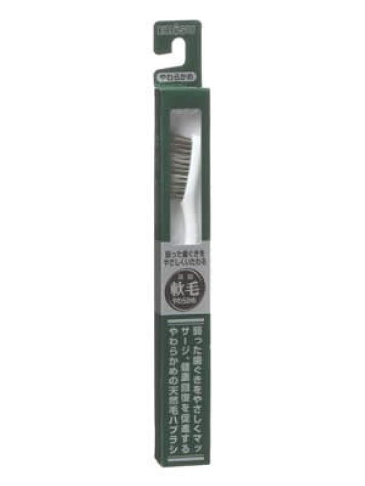 アグネスグレイターゲット温室エビス 天然毛軟毛歯ブラシ350 やわらかめ ×10個セット