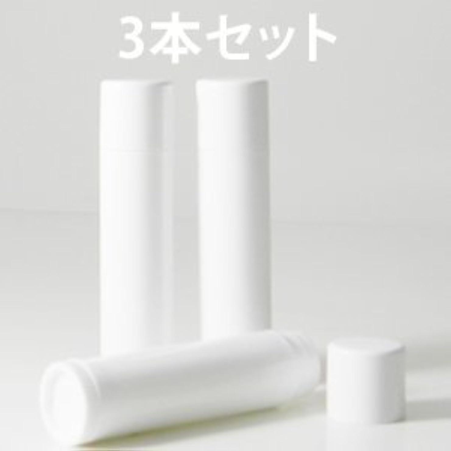 悲惨有益な豊かなリップバームチューブ 化粧品容器 ホワイト 3本セット