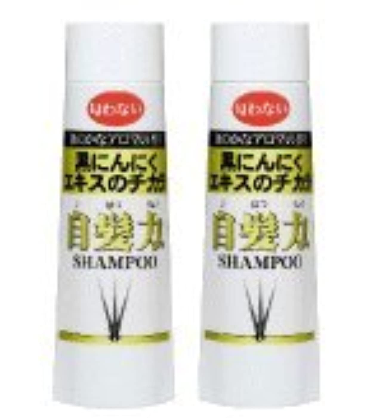 傾いた破壊的な努力する黒にんにくシャンプー 自髪力 男性用(250ml)2本セット
