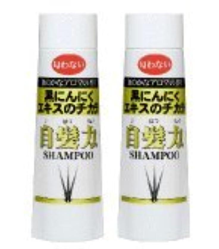リスト認識調整する黒にんにくシャンプー 自髪力 男性用(250ml)2本セット