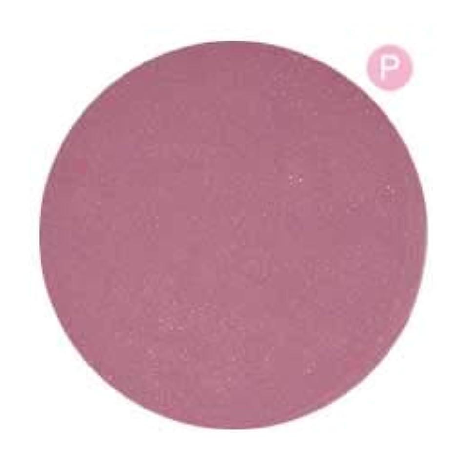 できない選ぶ大西洋PRE GEL カラージェル カラーEX ダリアなパール-P 3g PG-CE573 UV/LED対応