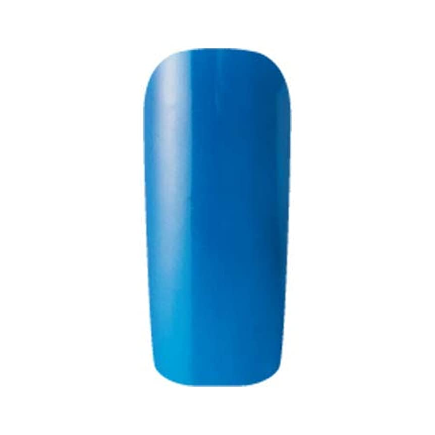 ミリメーター返還既にFleurir カラージェル C14 シアンクリア 4ml UV/LED対応