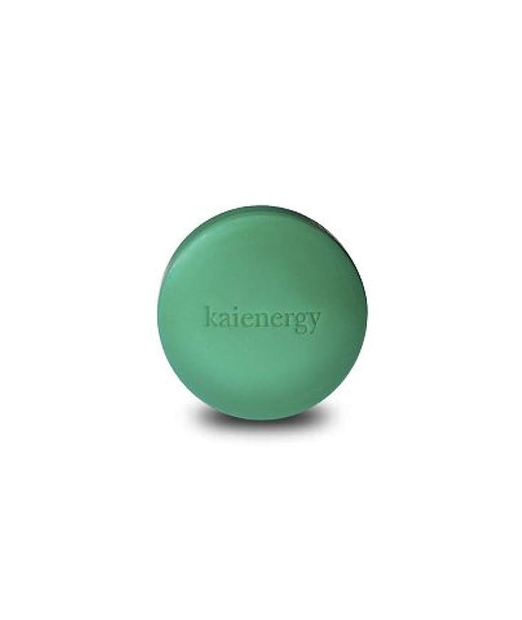今晩抗生物質有彩色の【ソープ】 特許成分 【エクセルキトサン】配合 カイエナジー kaienergy カイエナジー フェイシャルソープ