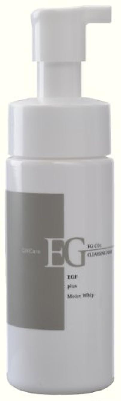 一般的に言えば家主十代セルケア EG炭酸洗顔フォーム 150ml
